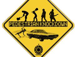 1305188690_pedestrian_knockdown_logo.jpg